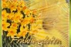 fruehling02
